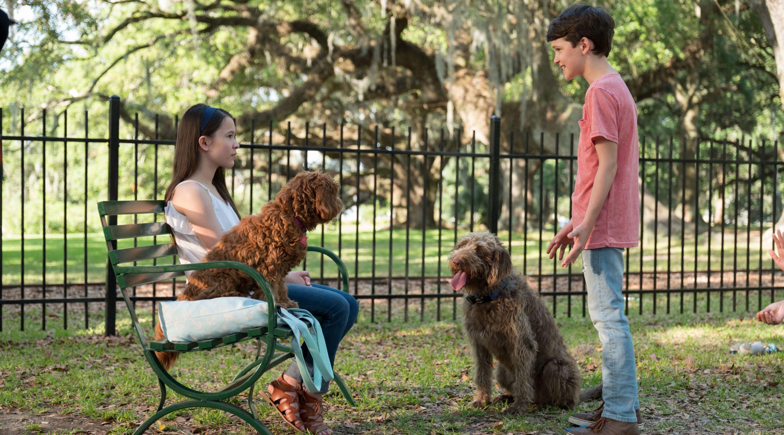 """""""Думай як пес"""" – трейлер до сімейної комедії з Меґан Фокс"""