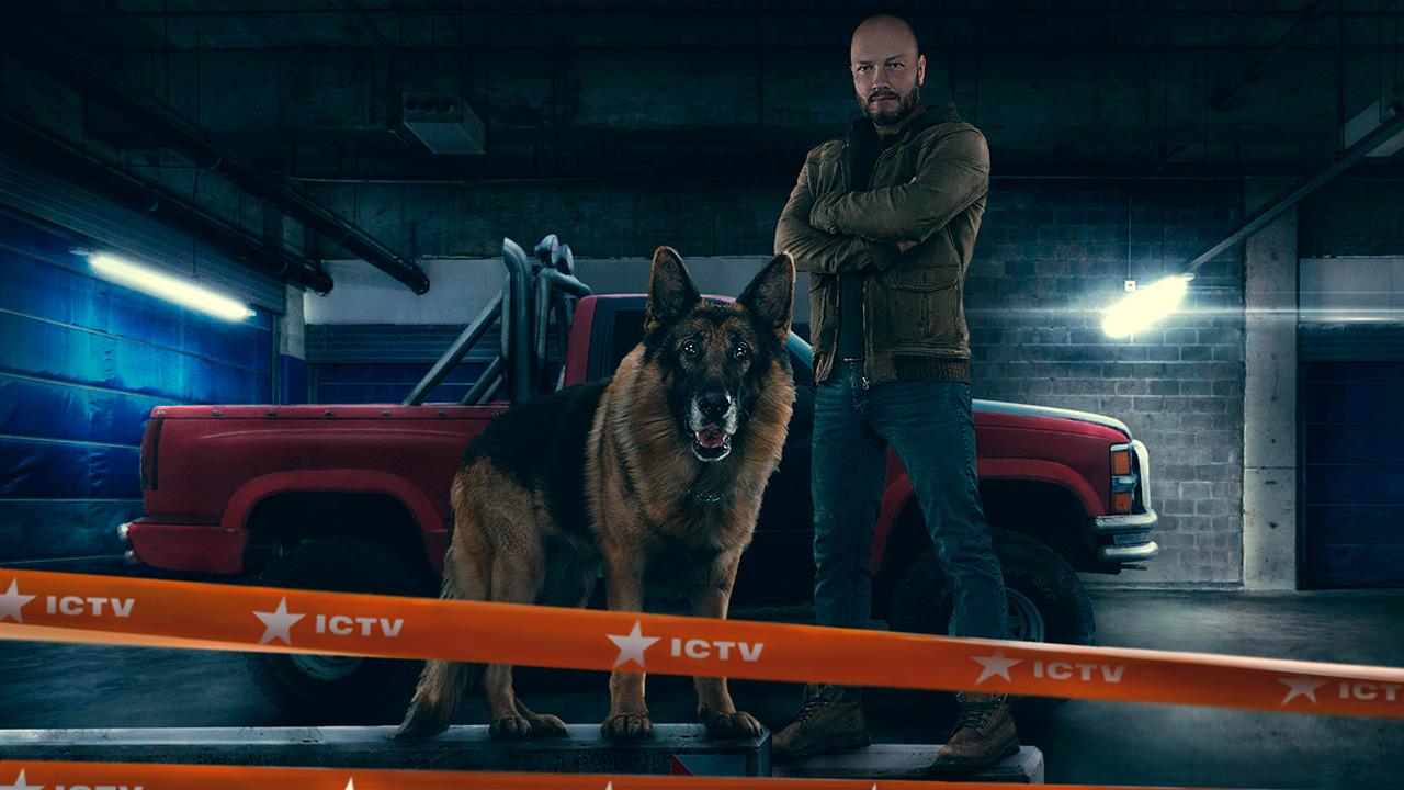 Оголошена дата виходу продовження серіалу «Пес»